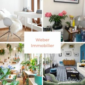 montage photo du compte instagram weber immobilier